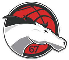 Leicester Riders. The best Basketball team
